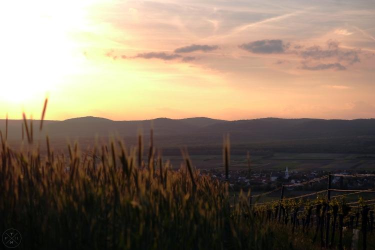 2017_05_16_Sonnenuntergang Schützen