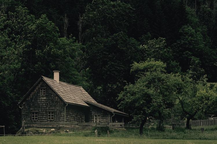 Tag3_Holzhütte2 (1)